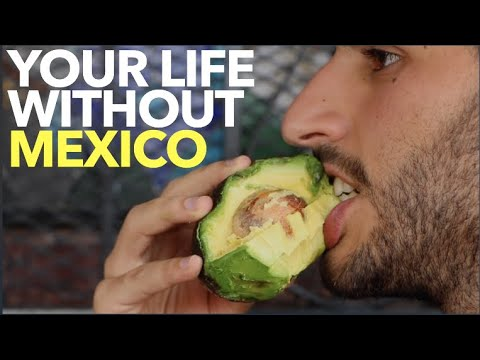 Your Life Without Mexico