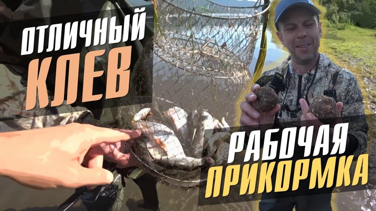 Рыбалка на ельца / Прикормка своими руками / Утренний клев