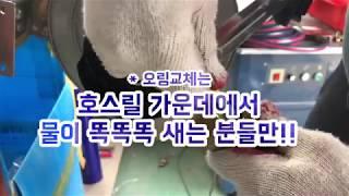 태창 자동호스워터릴 호스교체 영상