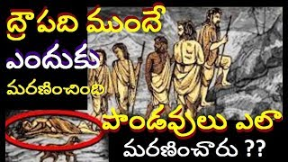 మహాభారతంలో ద్రౌపది ముందుగా ఎందుకు మరణించింది Real mysteries in telugu About Pandavas Death Mystery |