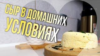 Сыр в домашних условиях рецепт из трех ингредиентов
