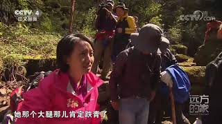 [远方的家]行走青山绿水间 探访黄土高原水塔  CCTV中文国际