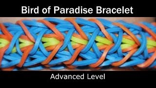 Rainbow Loom® Bird of Paradise Bracelet