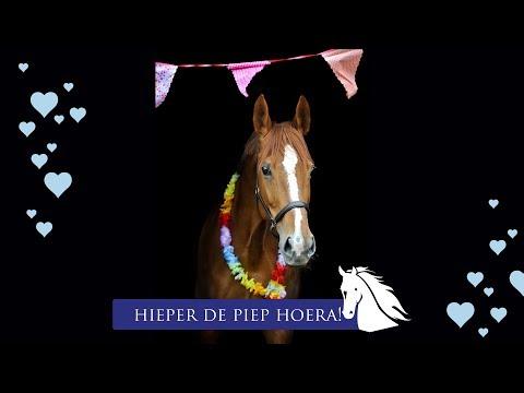 Verona is jarig en wordt 16 jaar! * Hart voor Paarden *