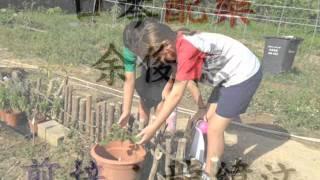 清水灣小學訪永隆有機耕作基地