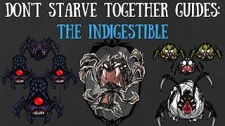 Don't Starve Together Character Guide: Webber