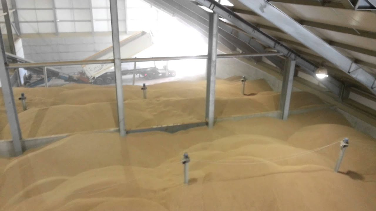 Inside the Grain Store at Shoreham Silos - YouTube