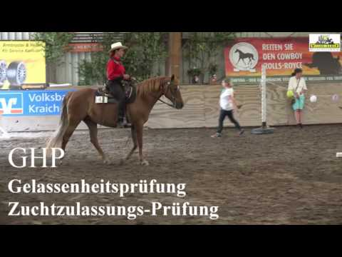 EMFTHA European High Point Tournament - Missouri Fox Trotter 6/2017