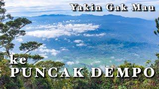 Perjalanan Menuju Puncak Gunung Dempo Pagar Alam