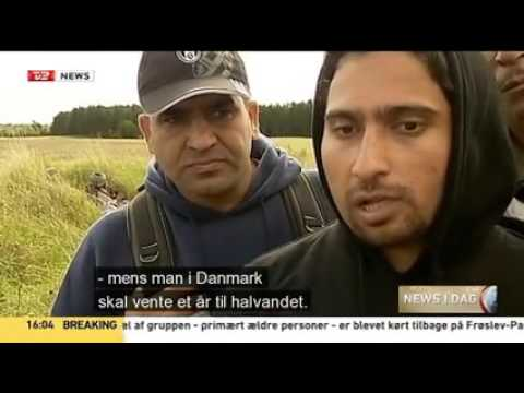 Why Immigrants want Sweden and not Denmark