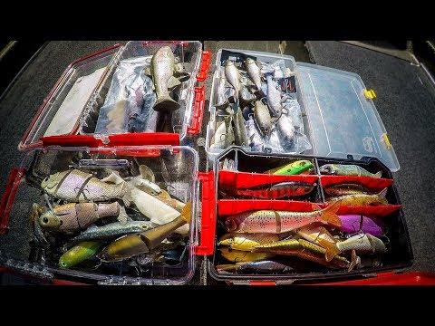 swimbait-box-tour- -which-swimbaits-really-catch-fish?