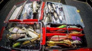 Swimbait Box Tour | Which Swimbaits Really Catch Fish?