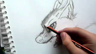 Angry Wolf - tutorial