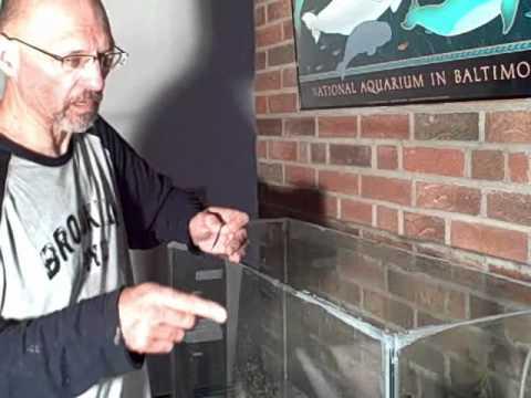 Fish Tank Frame Repair