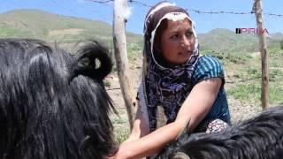 Çigdem Dogan: Zorluklari olsa da koyde yasamayi cok seviyorum