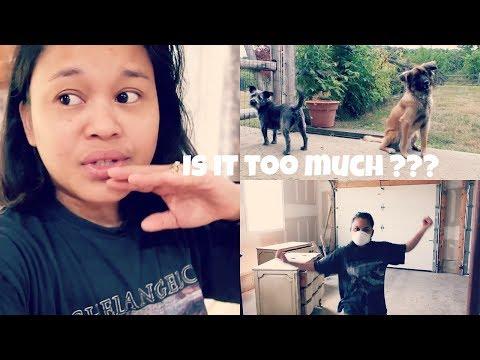 V L O G ❤️ Pls. Let Me Know Guys : MaryAnn.A RealityTV