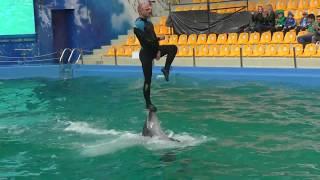 Одесский дельфинарий NEMO - новое шоу Единая Планета