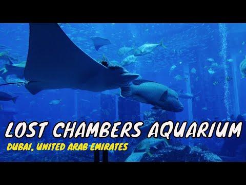 Lost Chambers Aquarium at Atlantis The Palm – Dubai UAE    #HariNgLarga