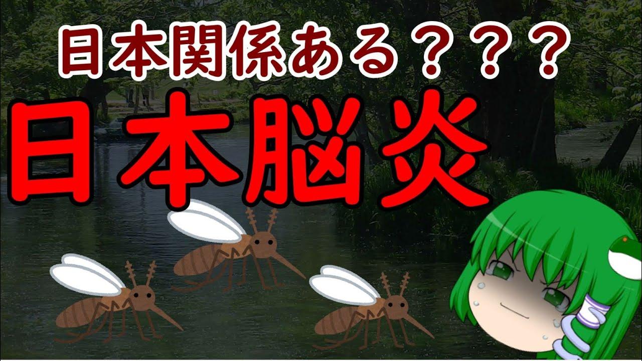 【ゆっくり解説】日本関係あるの!? 感染症解説 『日本脳炎』
