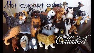 Моя коллекция собак от фирмы CollectA/ My collection of dogs by CollectA