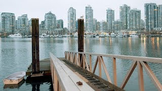 Vancouver waters show high E. coli levels