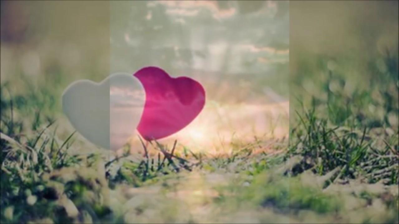 Pecado Rasgado Internacional Danny Shann - Your Love 1978