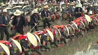 Japan celebrates rice planting tradition - no comment