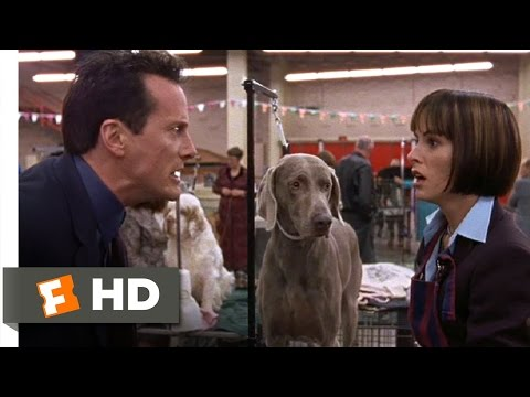 Best In Show (6/11) Movie CLIP - Busy Bee (2000) HD