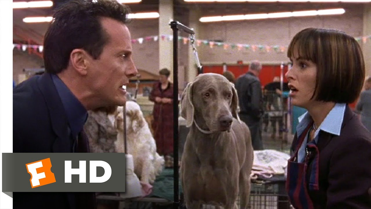 Best in Show (6/11) Movie CLIP - Busy Bee (2000) HD - YouTube | Busy Bee Dog Toy