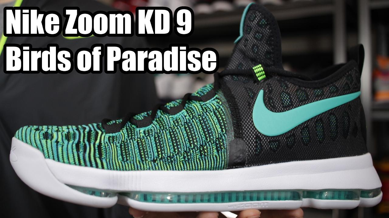 a9e3c2ee6660e3 Nike Zoom KD 9  Birds of Paradise  W  On Foot - YouTube