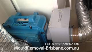 Mould Removal Brisbane Cleaning Mould in Home ceiling Space