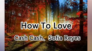 Cash Cash、Sofia Reyes - How To Love - I know I need somebody,So I can learn how to love【抖音热门歌曲】
