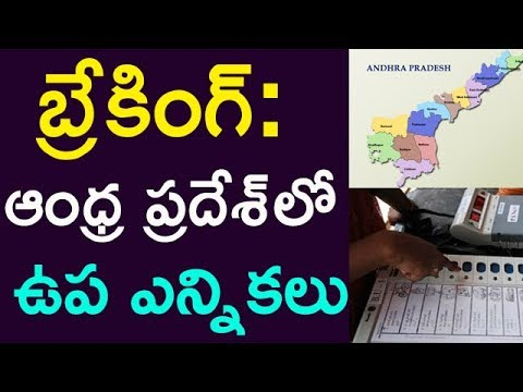 Breaking : By Elections In Andhra Pradesh | Taja30