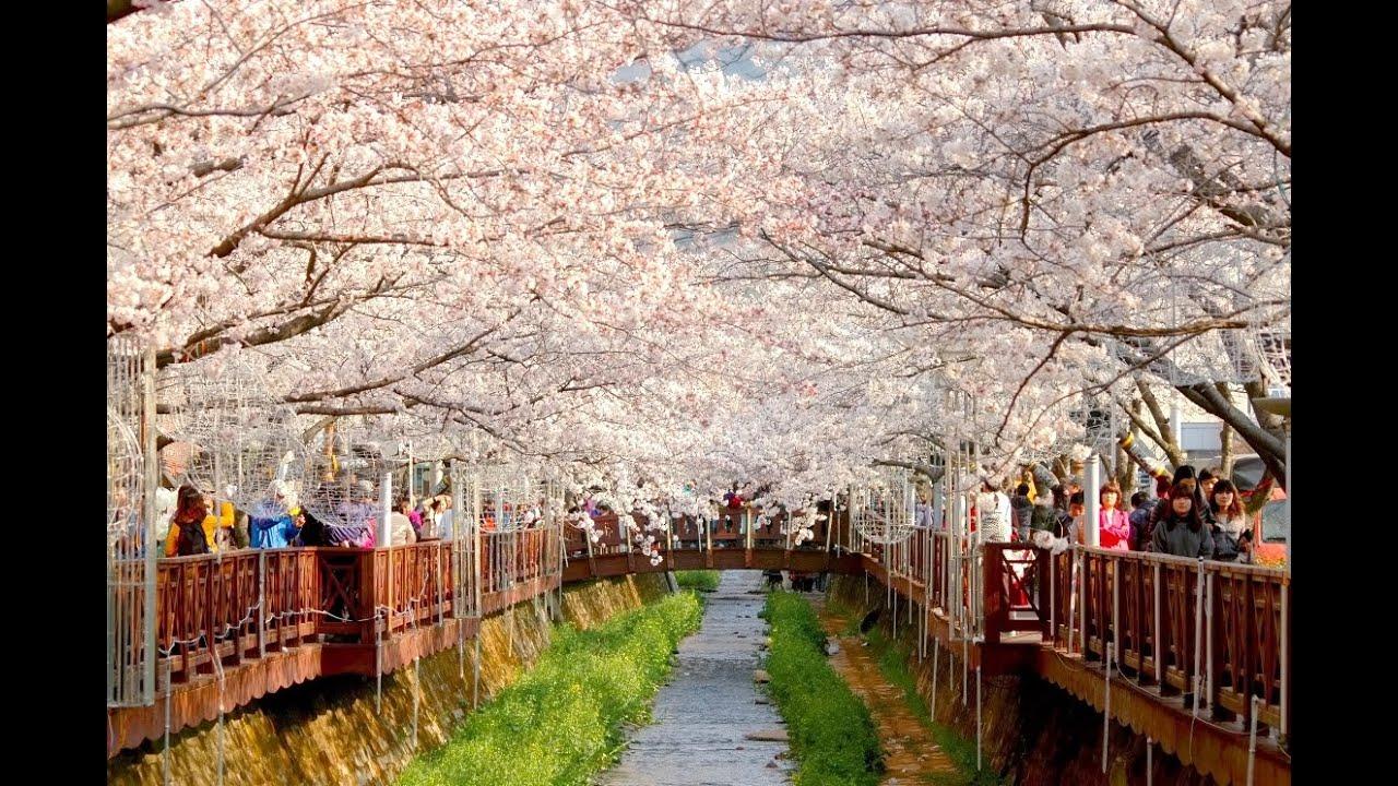 Beautiful Places In Korea 2 Youtube