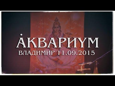 Песня Песня Нелюбимых (live Владимир 2015) - Аквариум скачать mp3 и слушать онлайн