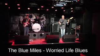 The Blue Miles - Worried Life Blues