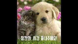 국회천막농성 인간띠 010-2335-9155