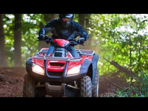 2018 Honda® FourTrax® Rincon® Honda Phantom Camo® ATV For Sale in Lake City, FL