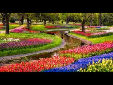 Most Beautiful Gardens - Youtube