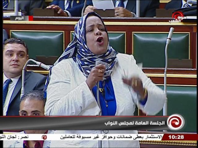 جلسة 2017⁄05⁄02׃ الجلسة العامة لمجلس النواب