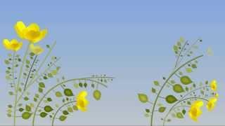 ♥ Футаж! (Footage ) ♥ Распускающиеся цветы  ♥(Скачивайте,и вставляйте на своё видео! ♥ ♥ Как скачивать с YouTube смотрите: (http://youtu.be/UksktBWoohE ) Все футажи..., 2013-09-13T07:21:24.000Z)
