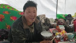 【环华十年】虫草配稀饭!真的有人这么吃,看看西藏挖虫草人的生活