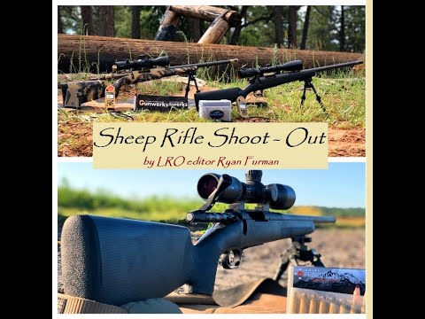 The Sheep Rifle Shoot~Out