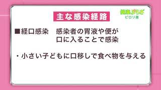 健康ぷらざ:ピロリ菌(2017.7)