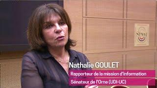 Rapport de la mission d'information sur la place et le financement de l'Islam en France