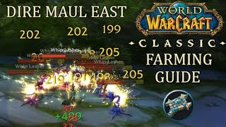 Lasher Gold Farm Guide [Priest] Dire Maul East | WoW Classic