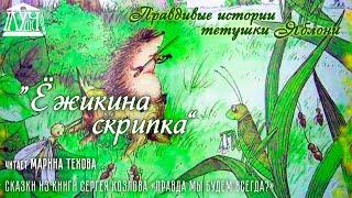 """Правдивые истории тетушки Яблони • """"Ёжикина скрипка"""""""