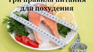 Основные правила питания для похудения от диетолога Ковалькова