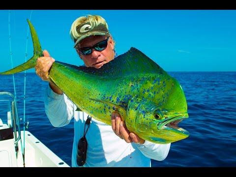 Deep Sea Fishing Big Fish for Mahi Mahi in Venice Louisiana