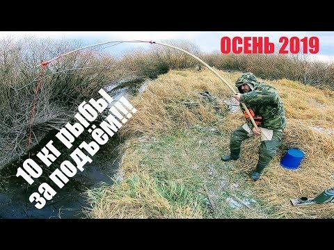 Рыбалка на паук рыболовный сделанный своими руками Рыбалка 2019 Рыбалка на карася 10кг рыбы за 1 раз